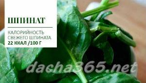 шпинат2