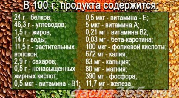 чечевица1