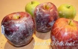 яблокисохранить5
