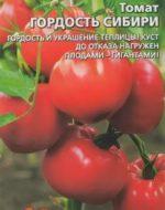 Что такое детерминантные и индетерминантные сорта томатов Отличия описание