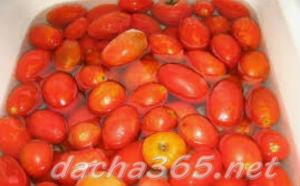помидорзаморозить3