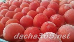 помидорзаморозить5
