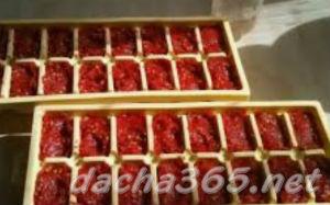 помидорзаморозить8