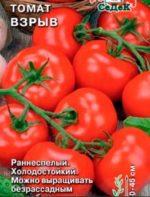 Детерминантный сорт помидор – что это такое и как его определить