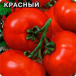 Томат Сахар коричневый характеристика и описание сорта урожайность отзывы фото
