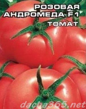 андромеда7
