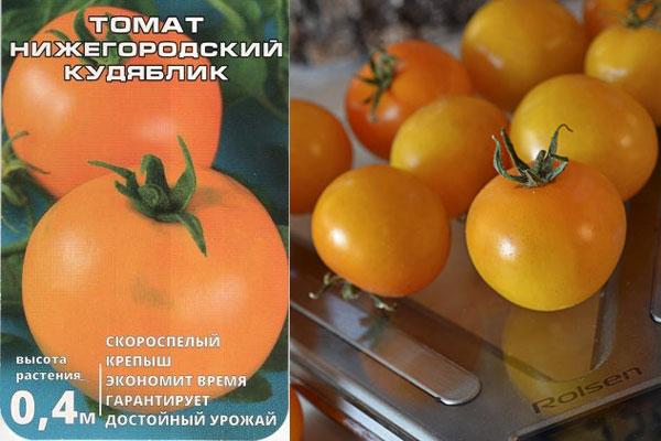 Томат Нижегородский кудяблик: отзывы, фото, урожайность, описание ...