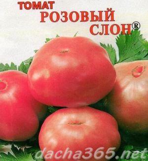 розслон5