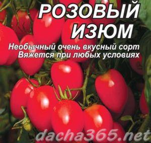 томат Розовый изюм