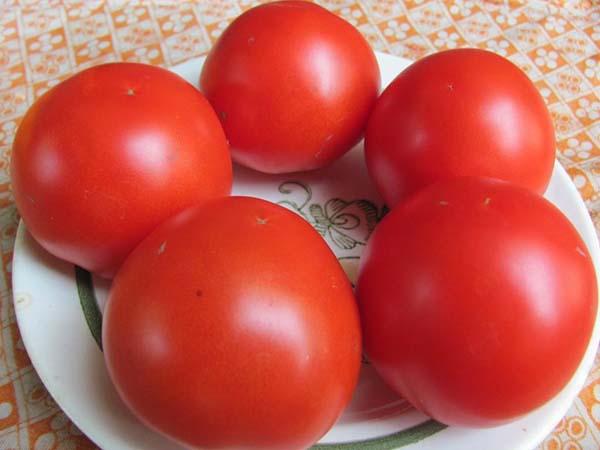 Томат Яки F1 характеристика и описание сорта урожайность с фото