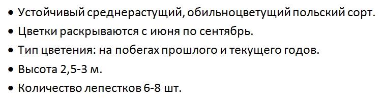 Купить Клематис Варшавский Найк Clematis Warszawska Nike