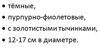 Клематис варшавска найк описание
