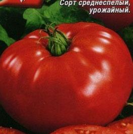 Томат гигант Новикова отзывы фото урожайность
