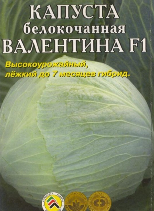 Валентина8