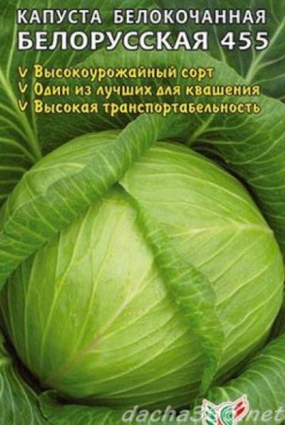 беларусская6