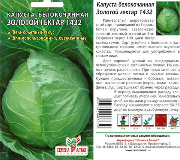 Преимущества и недостатки капусты золотой гектар