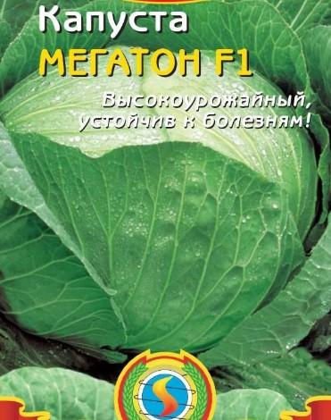 мегатон6