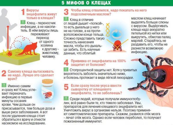 Анализ крови при укусе клеща